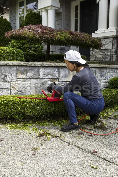 Yard Work at Home  Stock photo © tab62
