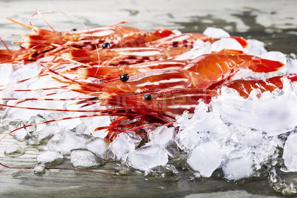 Vivre crevettes quai glace pêche Photo stock © tab62