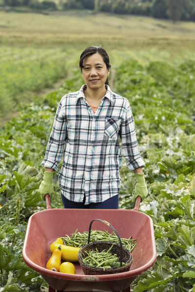 成熟した 女性 手押し車 野菜 フル ストックフォト © tab62
