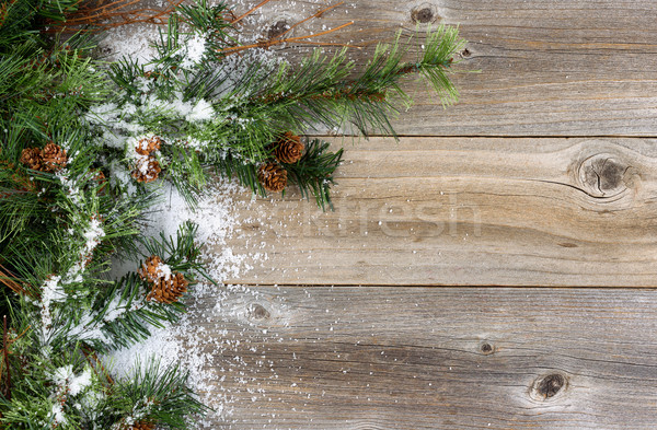 Rough Fir branches covered in snow on rustic wooden boards Stock photo © tab62