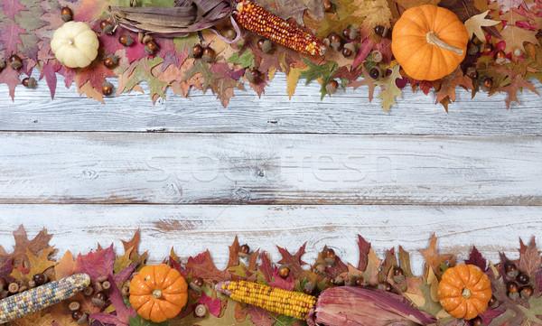 Top and bottom borders of Autumn Seasonal Decorations  Stock photo © tab62