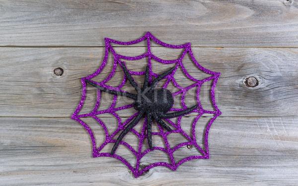 Halloween toile d'araignée haut vue symbole Photo stock © tab62