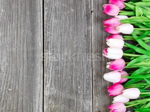 Tulipánok klasszikus fából készült deszkák húsvét rózsaszín Stock fotó © tab62