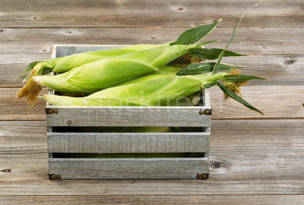 Vintage wooden crate filled with fresh corn in stalks on wooden  Stock photo © tab62