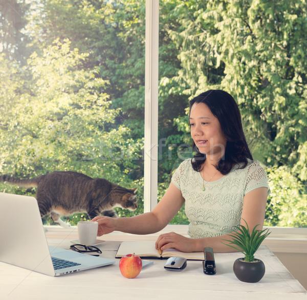 Vrouw werken home daglicht venster kat Stockfoto © tab62