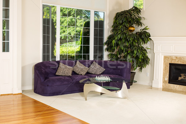 Formal Living Room with Large Windows  Stock photo © tab62