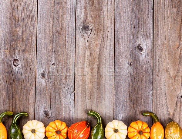 Bottom border of autumn gourd decorations on rustic wooden board Stock photo © tab62