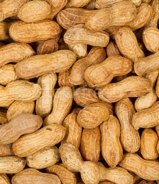 Dried shelled peanuts in filled frame layout  Stock photo © tab62