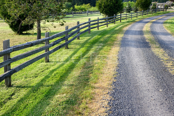 Country road on nice day   Stock photo © tab62