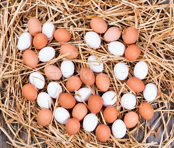 Friss egész fehér barna tojások szalmaszál Stock fotó © tab62