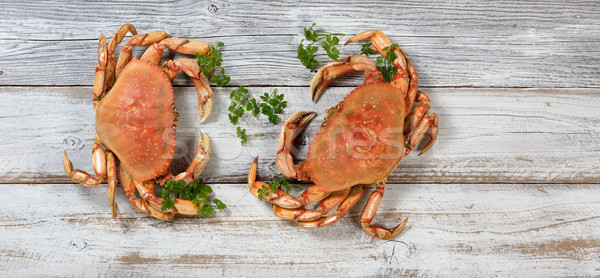 Two whole Dungeness Crabs  Stock photo © tab62