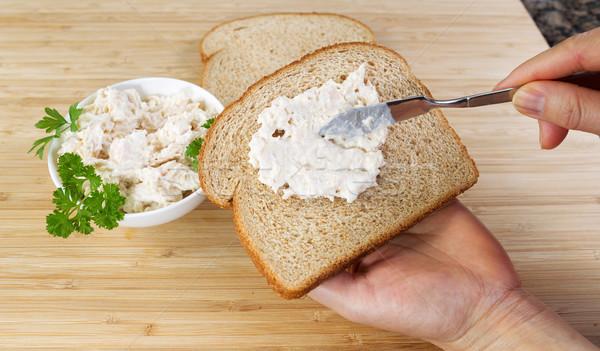 Foto stock: Atún · peces · sándwich · horizontal · foto · femenino