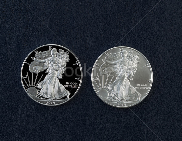 Proof and Uncirculated American Silver Eagle Dollar Coins Stock photo © tab62