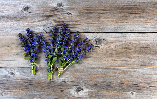Fresh spring wild flowers on rustic wood background  Stock photo © tab62
