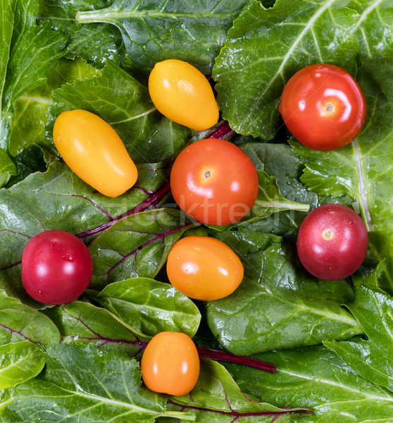 Fresh green leaf salad and tomatoes in filled frame layout  Stock photo © tab62