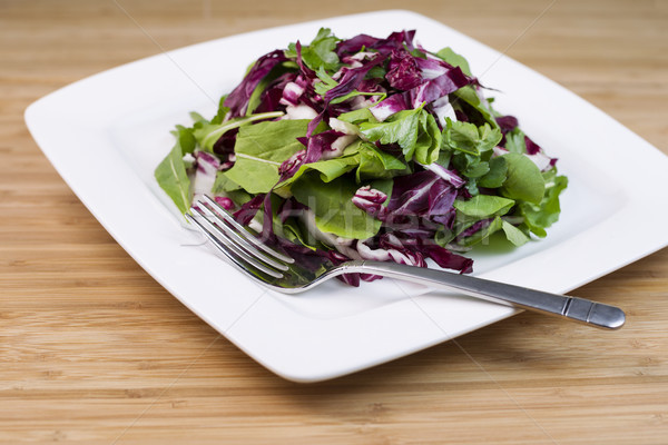 Fresh Salad in white plate Stock photo © tab62
