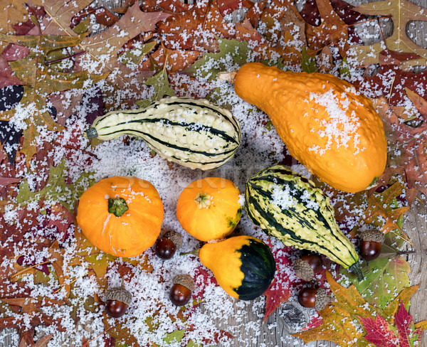 Jesienią pozostawia żołądź dekoracje pokryty Zdjęcia stock © tab62