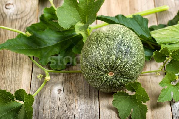 緑 ズッキーニ 工場 素朴な 木製 ストックフォト © tab62