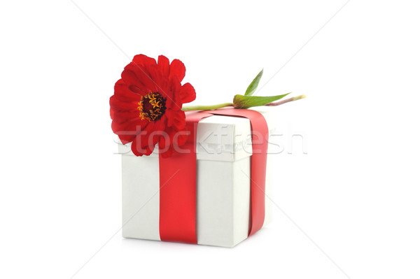 giftbox and red flower Stock photo © taden
