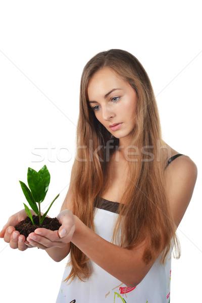 Genç kadın güzel yeşil ağaç avuç içi Stok fotoğraf © taden