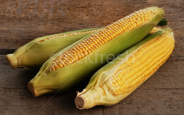 Friss kukorica fül zöld levelek izolált étel Stock fotó © taden