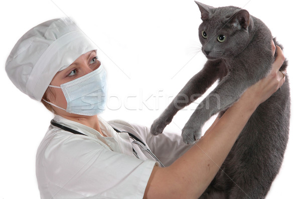 young woman medical holding cat Stock photo © taden