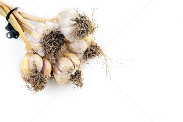 Yalıtılmış beyaz gıda doğa ışık tıp Stok fotoğraf © taden