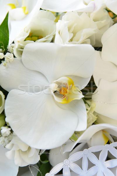 白 蘭 結婚式のブーケ 結婚式 ファッション 葉 ストックフォト © taden