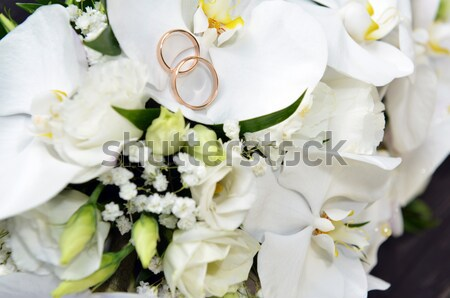 orchids and wedding rings Stock photo © taden