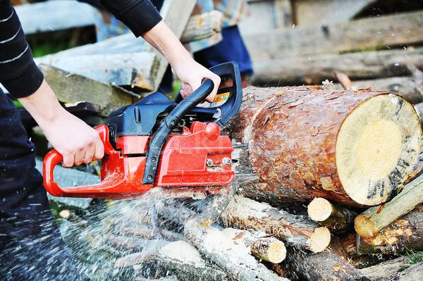 チェーンソー ブレード 自然 男性 ワーカー ストックフォト © taden