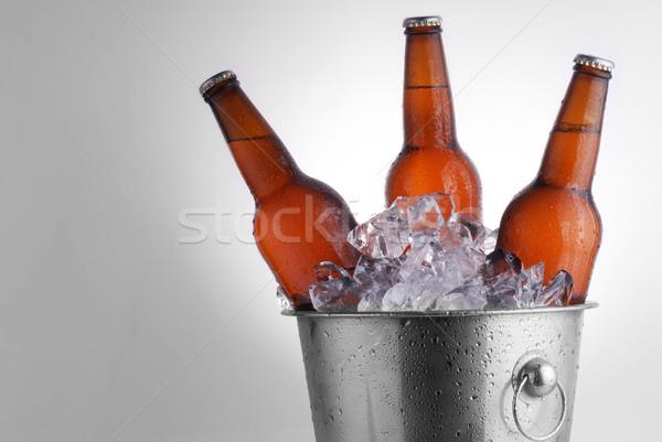 Cerveja garrafas três marrom gelo balde Foto stock © taden