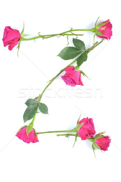 Rosa bellezza arte verde iscritto Foto d'archivio © taden