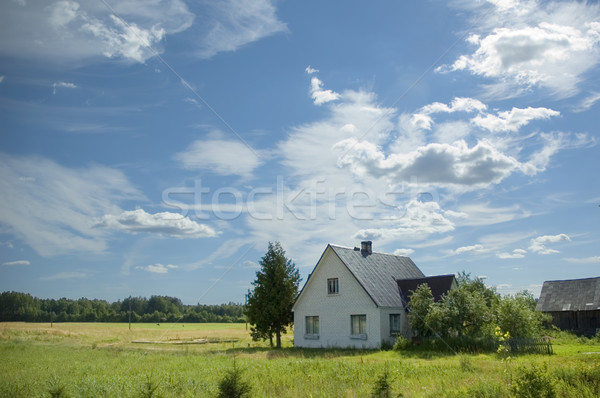 house in the country Stock photo © taden