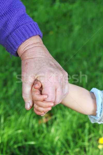 grandmother holds childs hand Stock photo © taden