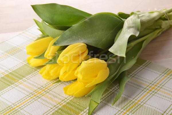 yellow tulips Stock photo © taden