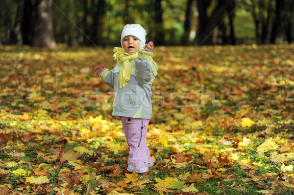 girl playing in autumn park Stock photo © taden