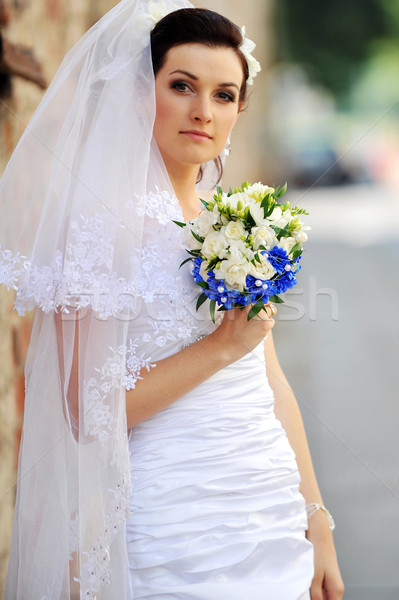 girl in wedding dress Stock photo © taden