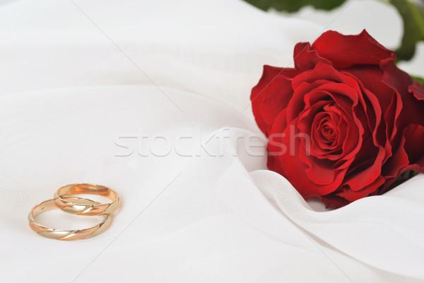 Gül halkalar düğün beyaz ipek çiçek Stok fotoğraf © taden