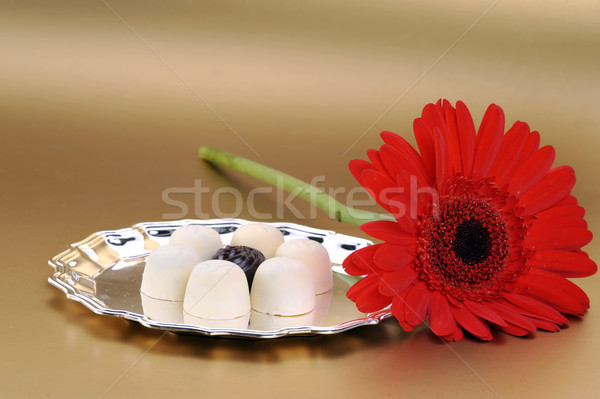 red flower and white chocolate Stock photo © taden
