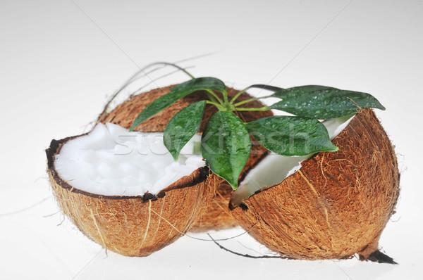 Coco folhas quebrado maduro branco Foto stock © taden