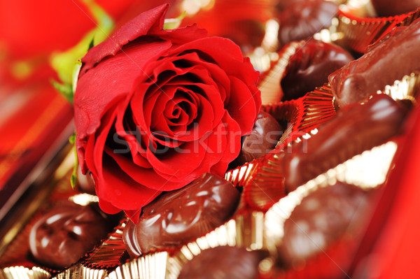 chocolates and rose on red Stock photo © taden