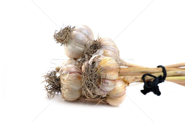 galic isolated on white Stock photo © taden