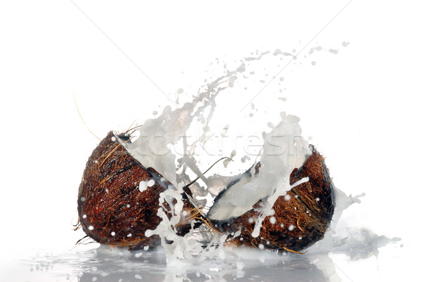 Repedt kókusz nagy csobbanás izolált víz Stock fotó © taden