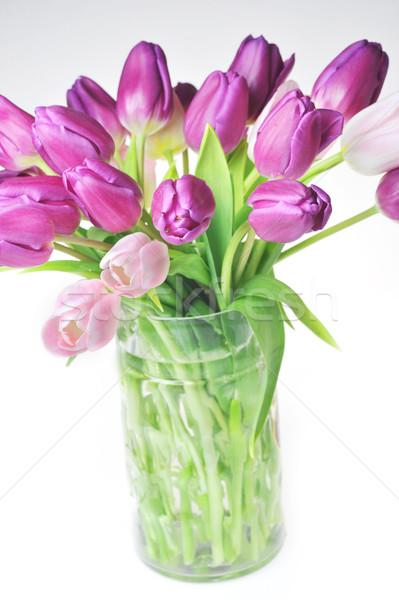 tulips in glass vase Stock photo © taden