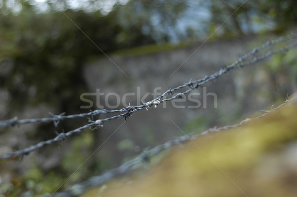 колючую проволоку Top стены ржавчины забор проволоки Сток-фото © taden