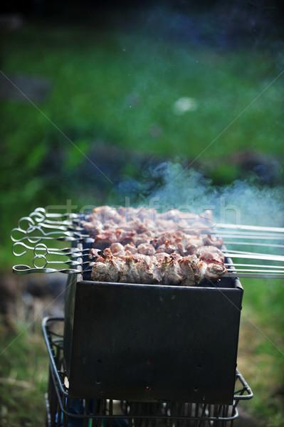 Stock fotó: Hús · szeletek · előkészítés · mártás · tűz · fű