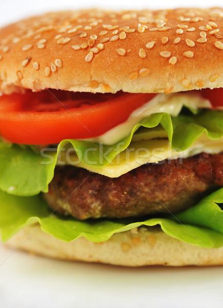 Hamburguesa hortalizas mesa grupo carne Foto stock © taden