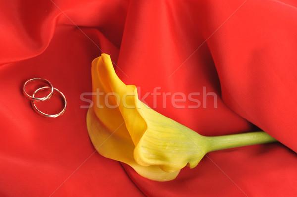 Piros szövet sárga virág kecses jegygyűrűk közelkép Stock fotó © taden