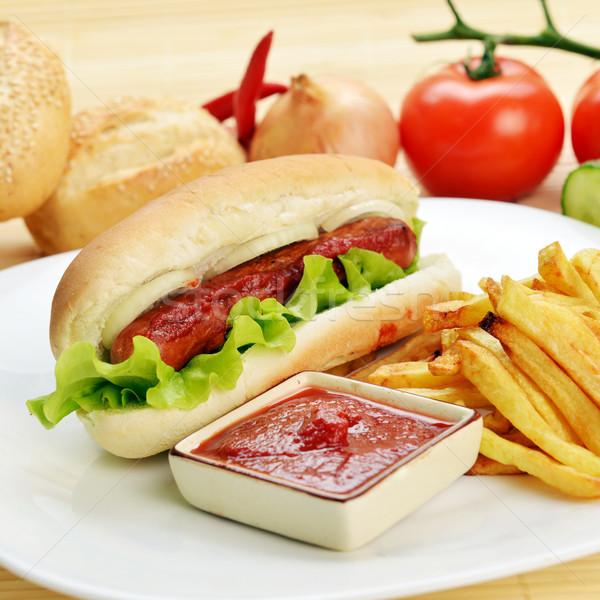étvágygerjesztő hot dog ízletes sültkrumpli fehér tányér Stock fotó © taden