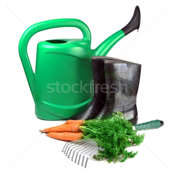 Sárgarépa kerti eszközök locsolókanna kesztyű gumicsizma természet Stock fotó © taden